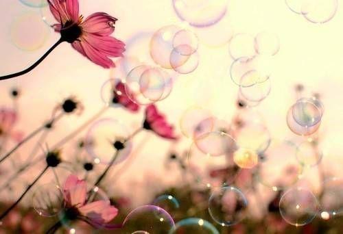 laka-z-kwiatami-i-babelkami-likely-pl-f1711e0d